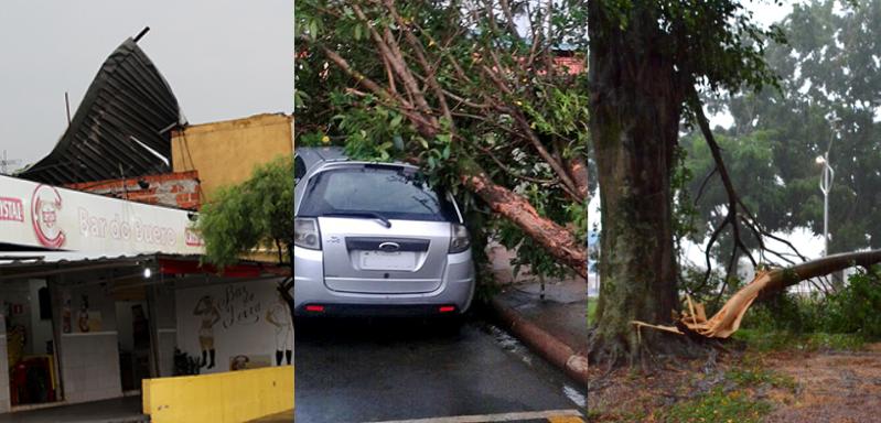 Temporal danifica telhado, derruba árvore em cima de carro e assusta moradores em Artur Nogueira