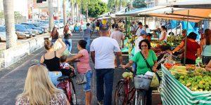 Feiras livres geram mais de 500 empregos em Artur Nogueira
