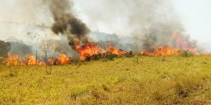 Incêndio em área rural de Artur Nogueira mobiliza unidades de segurança