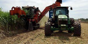 Grupo Bom Retiro abre vagas de emprego para a colheita da safra 2018/2019