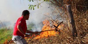 Incêndio devasta 10 mil metros quadrados de área rural em Artur Nogueira