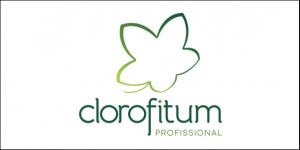 Clorofitum