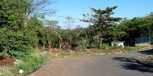 Área ambiental vira ponto de usuários de drogas em Artur Nogueira