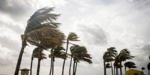 Morador de Artur Nogueira relata passagem de furacão na Flórida
